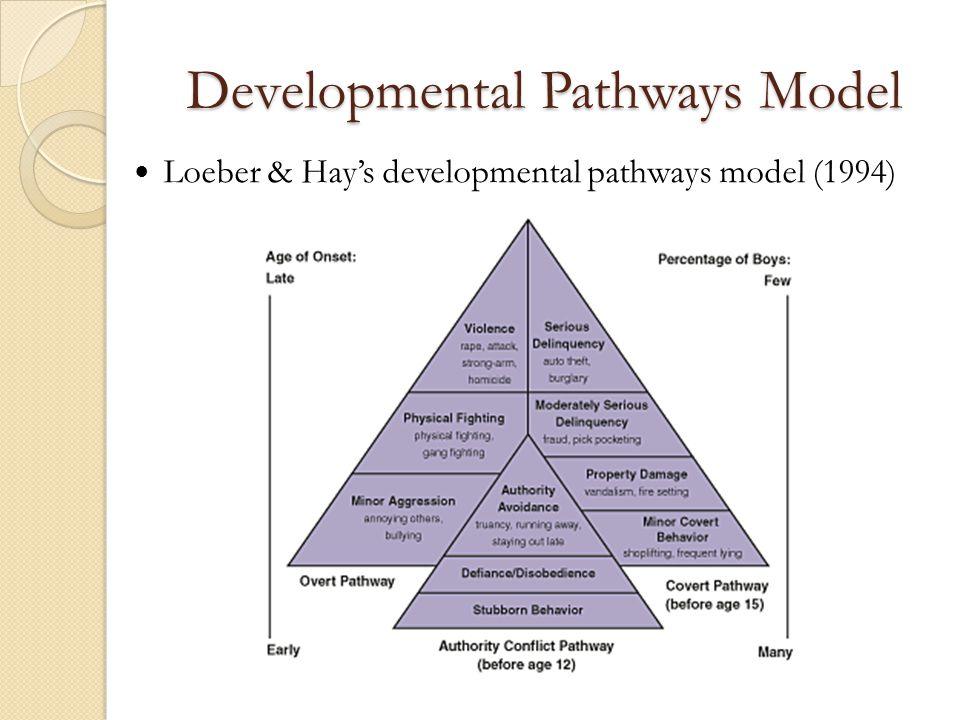 Developmental Pathways Model