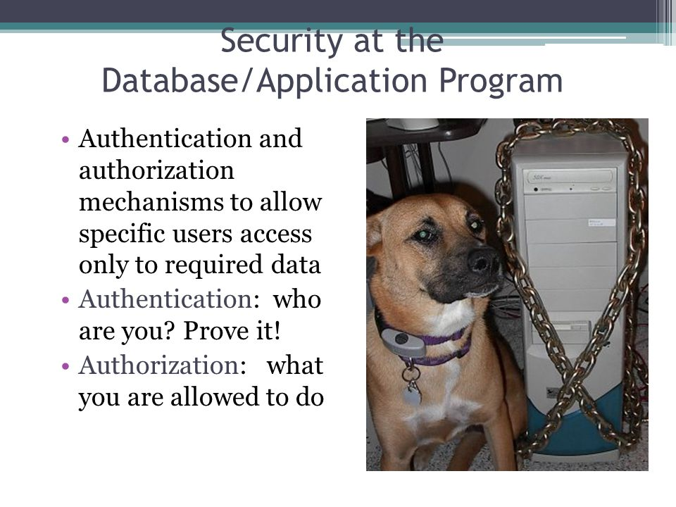 Security at the Database/Application Program