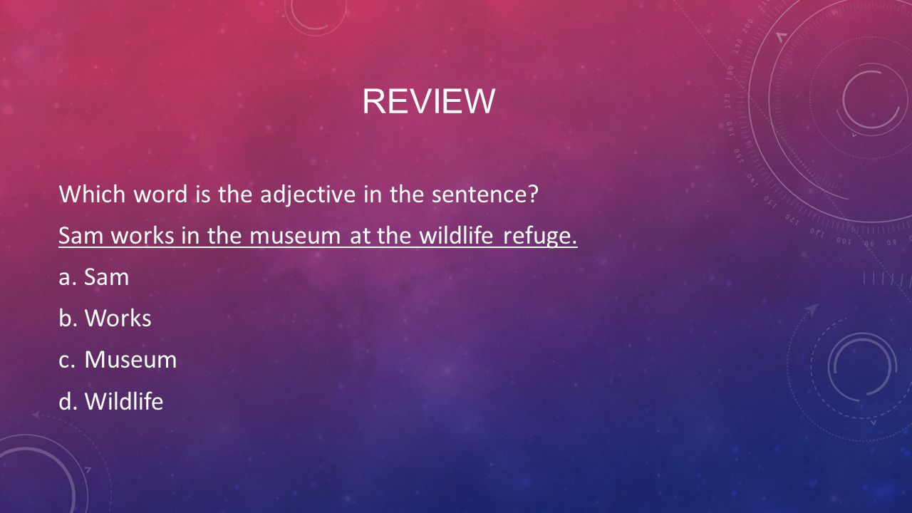 Review Which word is the adjective in the sentence