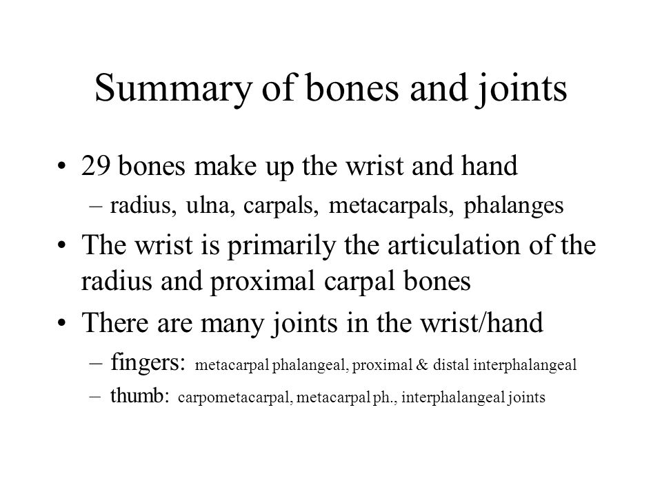 Summary of bones and joints