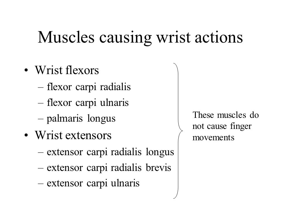 Muscles causing wrist actions