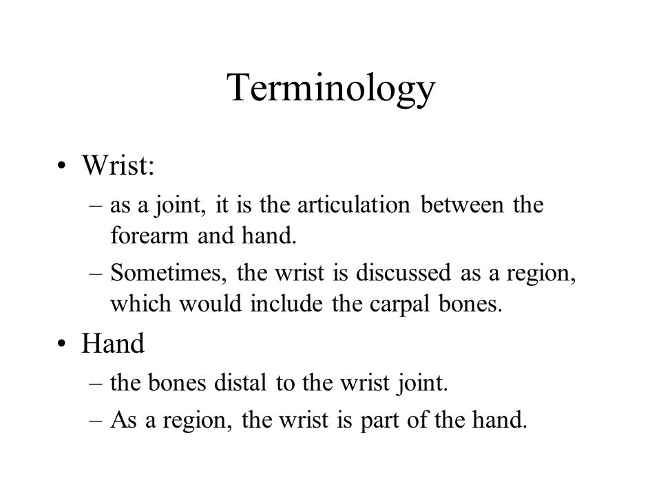 Terminology Wrist: Hand