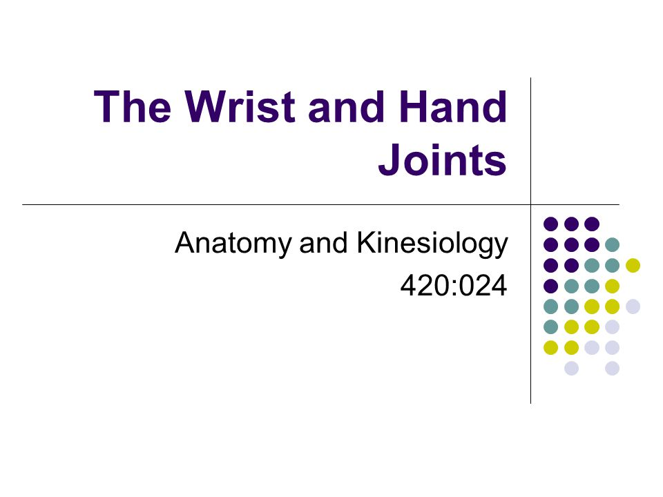 The Wrist and Hand Joints