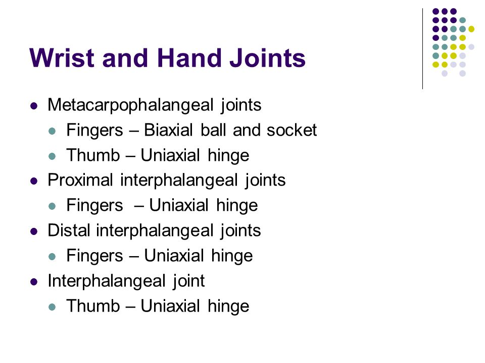 Wrist and Hand Joints Metacarpophalangeal joints