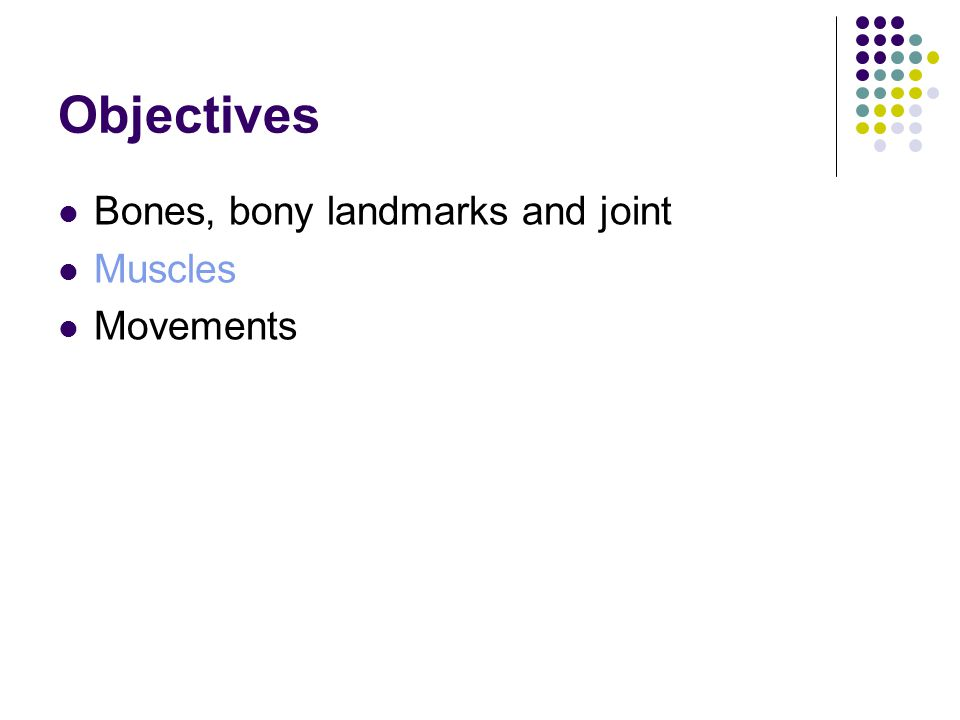 Objectives Bones, bony landmarks and joint Muscles Movements