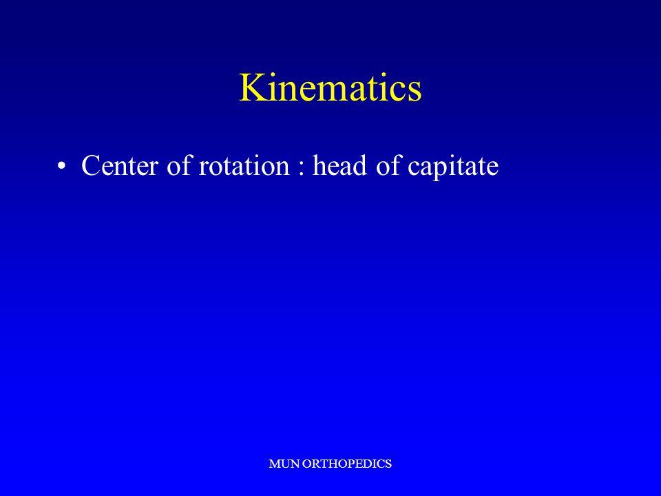 Kinematics Center of rotation : head of capitate MUN ORTHOPEDICS