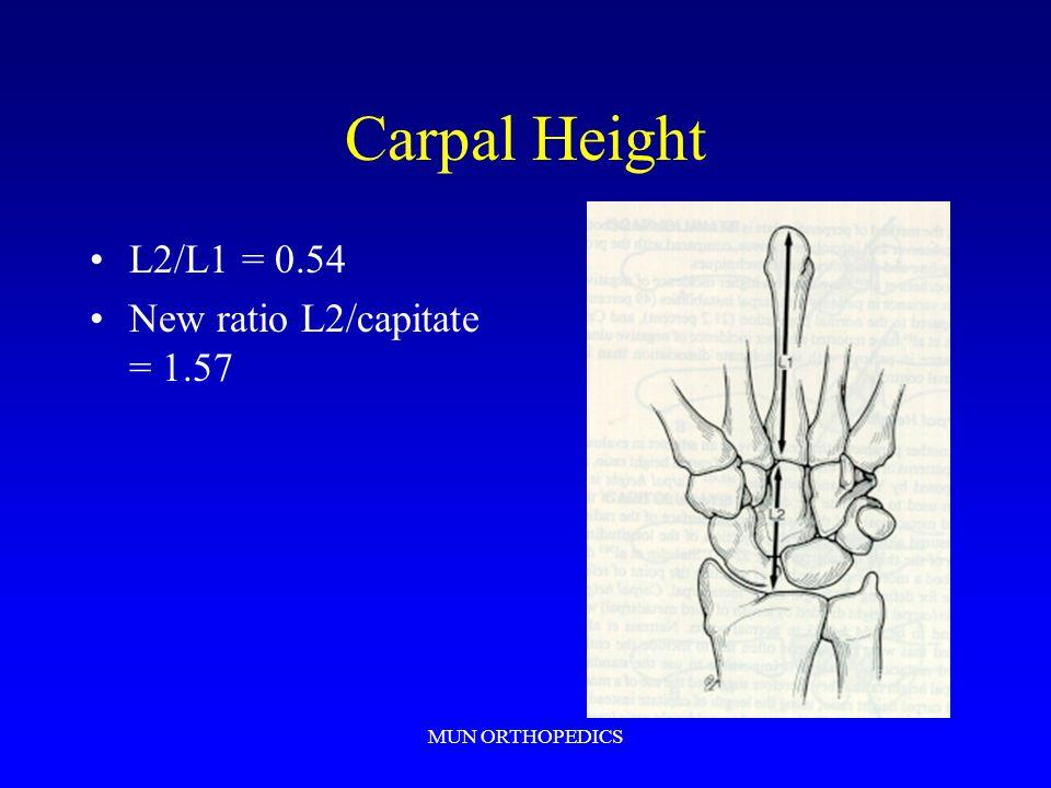Carpal Height L2/L1 = 0.54 New ratio L2/capitate = 1.57