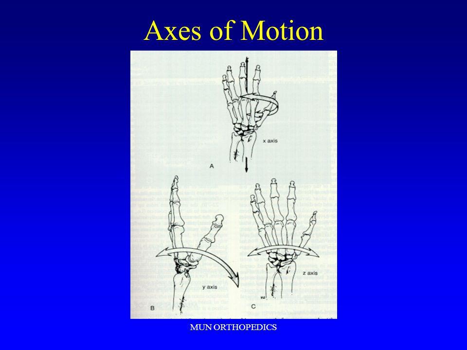 Axes of Motion MUN ORTHOPEDICS
