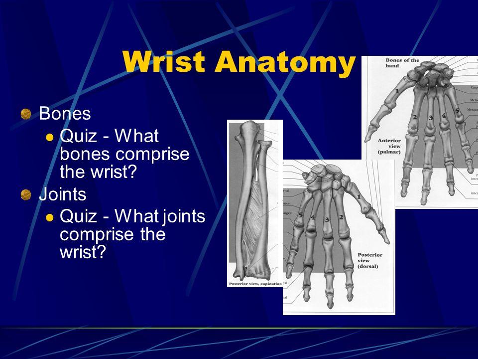 Wrist Anatomy Bones Quiz - What bones comprise the wrist Joints