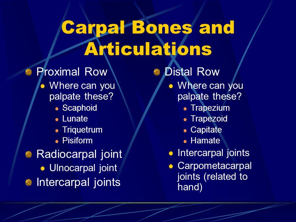 Carpal Bones and Articulations