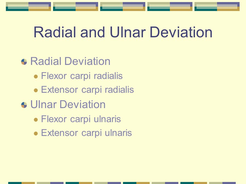 Radial and Ulnar Deviation