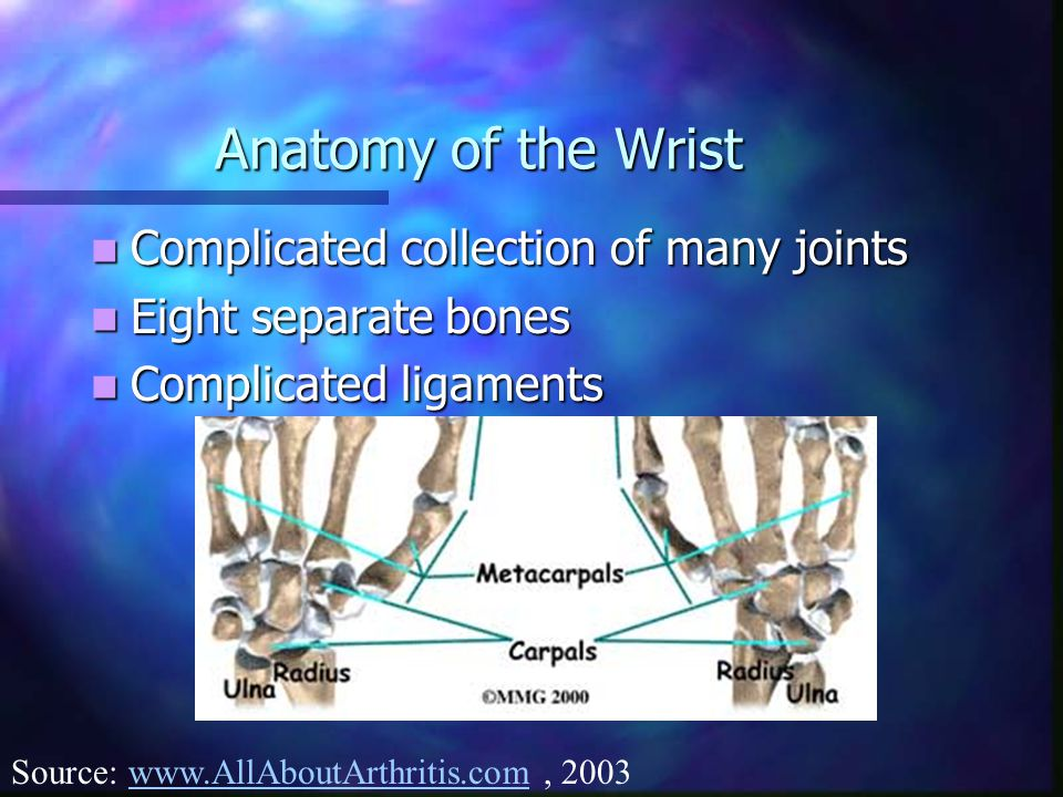 Anatomy of the Wrist Complicated collection of many joints