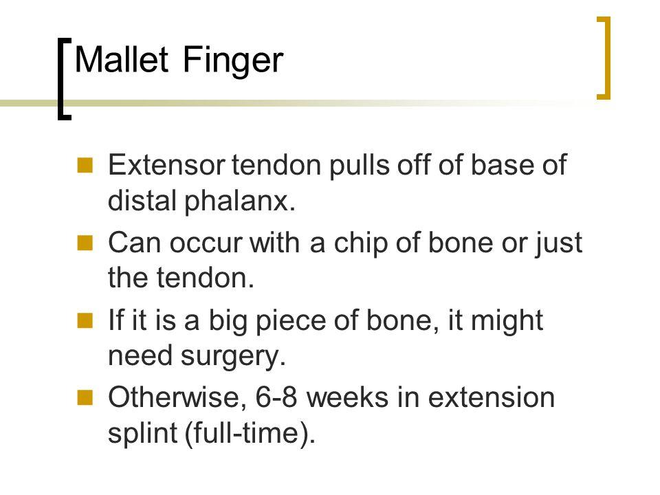 Mallet Finger Extensor tendon pulls off of base of distal phalanx.