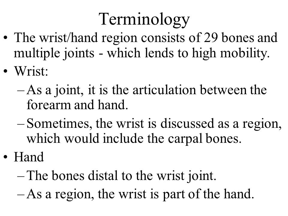 Terminology The wrist/hand region consists of 29 bones and multiple joints - which lends to high mobility.