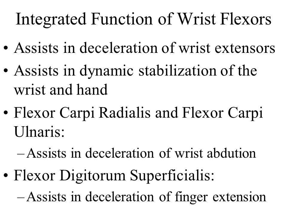 Integrated Function of Wrist Flexors