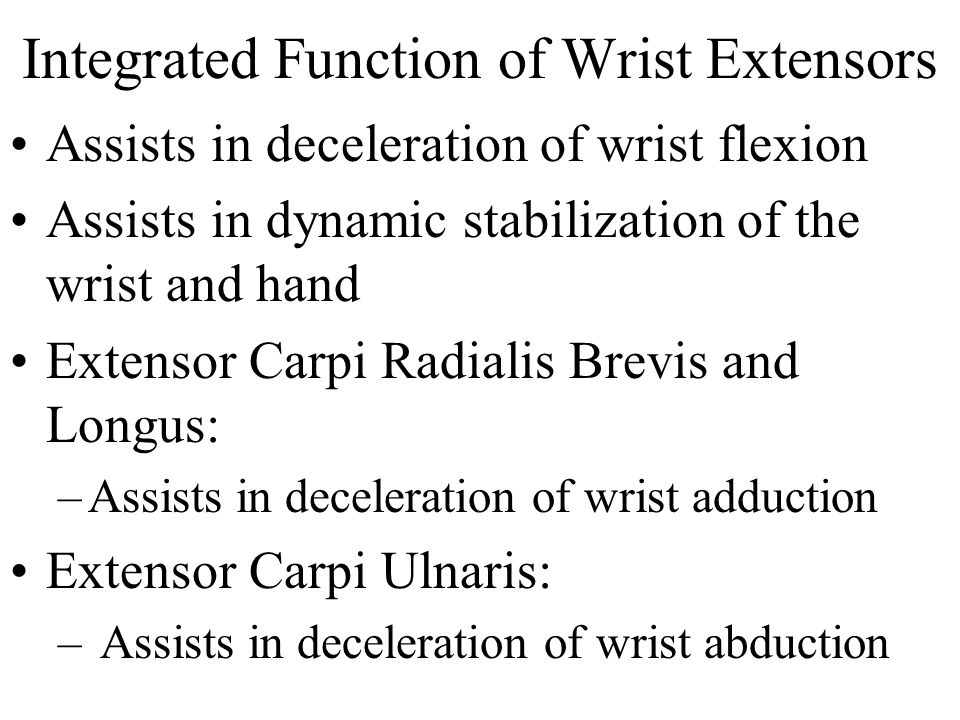 Integrated Function of Wrist Extensors
