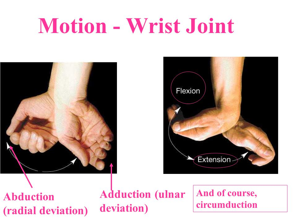 Motion - Wrist Joint Adduction (ulnar deviation)