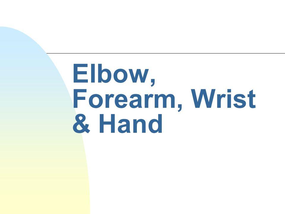 Elbow, Forearm, Wrist & Hand