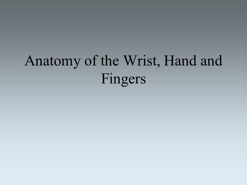 Anatomy of the Wrist, Hand and Fingers