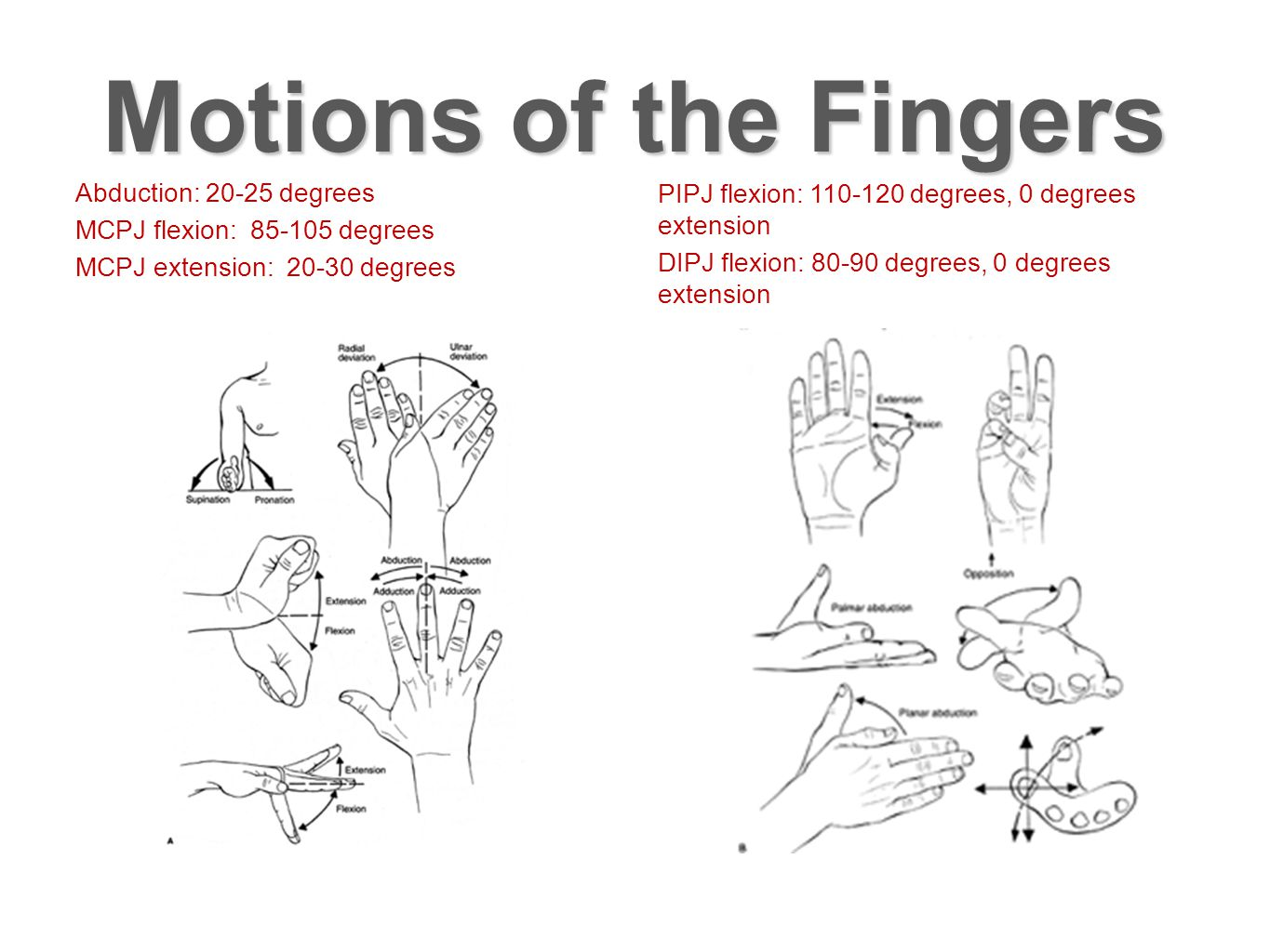 Motions of the Fingers Abduction: 20-25 degrees MCPJ flexion: 85-105 degrees MCPJ extension: 20-30 degrees