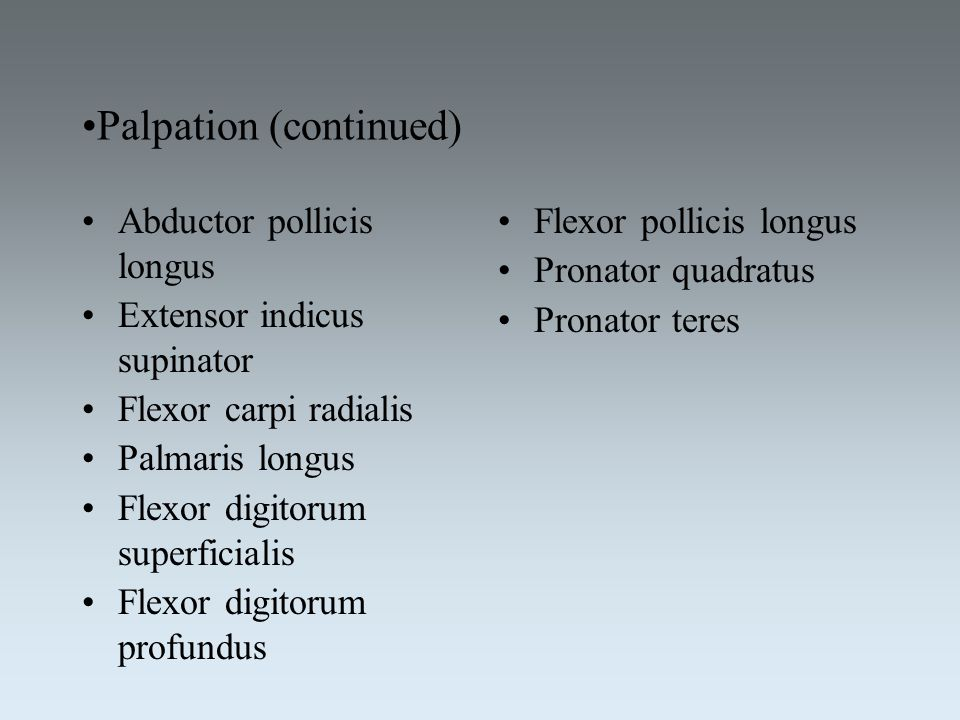 Palpation (continued)