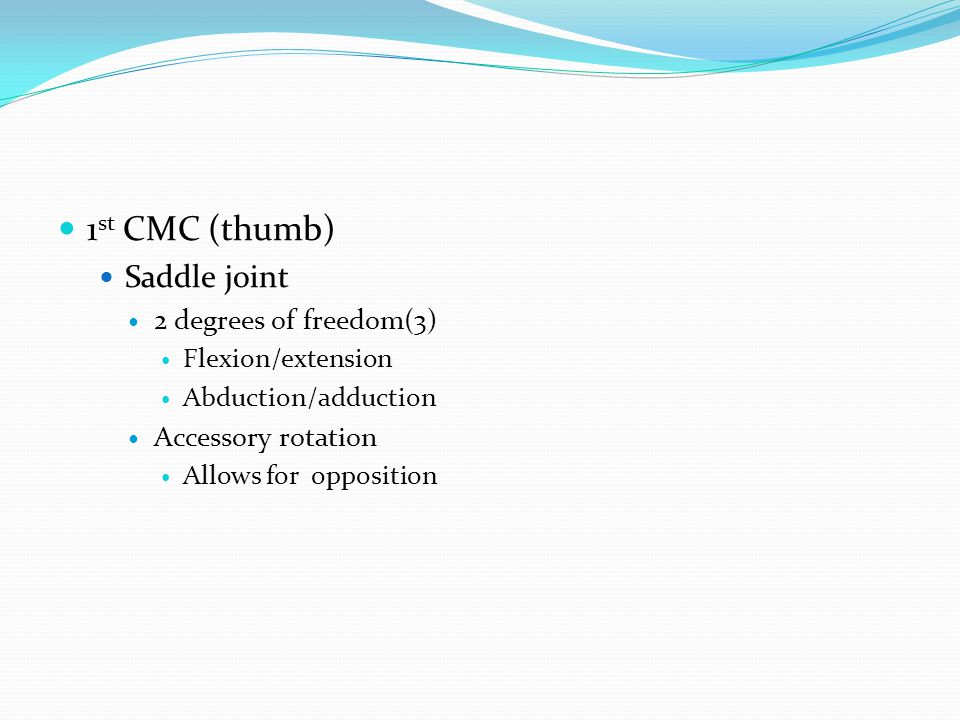 1st CMC (thumb) Saddle joint 2 degrees of freedom(3)