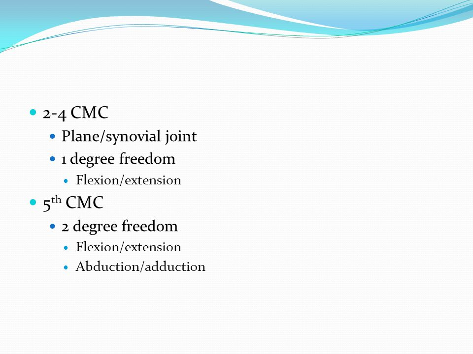 2-4 CMC 5th CMC Plane/synovial joint 1 degree freedom 2 degree freedom