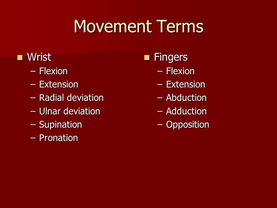 Movement Terms Wrist Fingers Flexion Extension Radial deviation