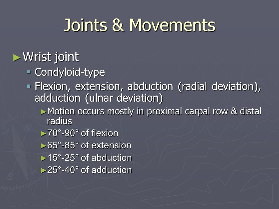 Joints & Movements Wrist joint Condyloid-type