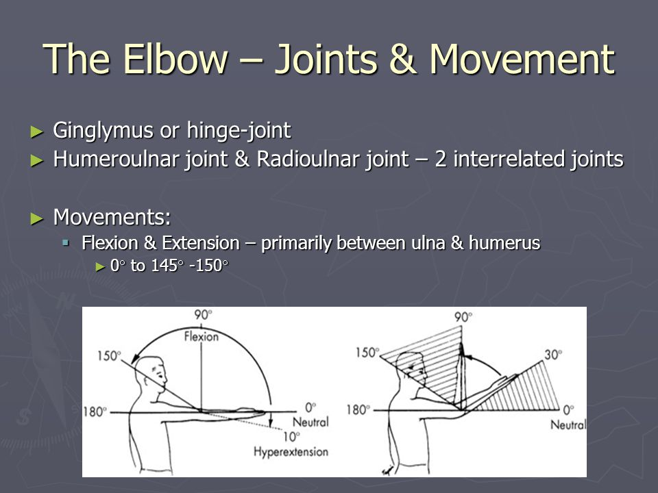 The Elbow – Joints & Movement