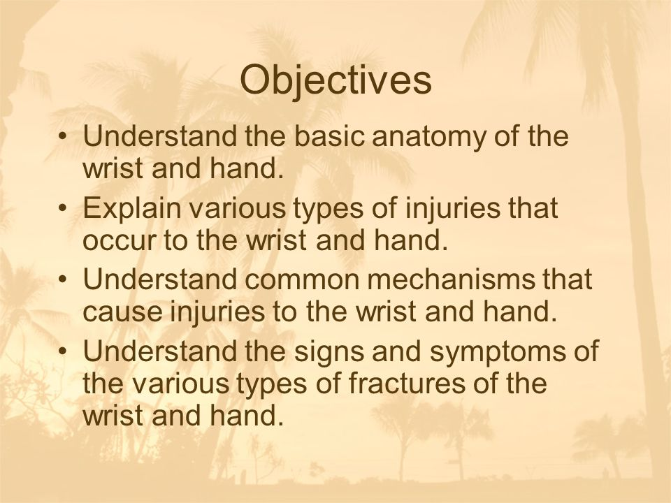 Objectives Understand the basic anatomy of the wrist and hand.