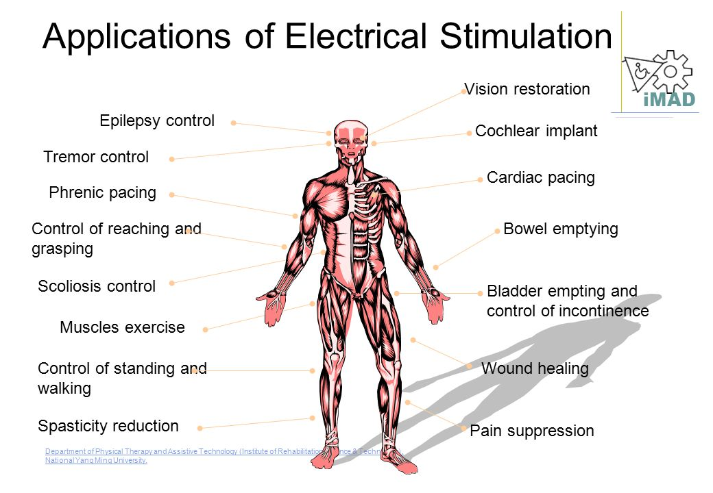 Applications of Electrical Stimulation