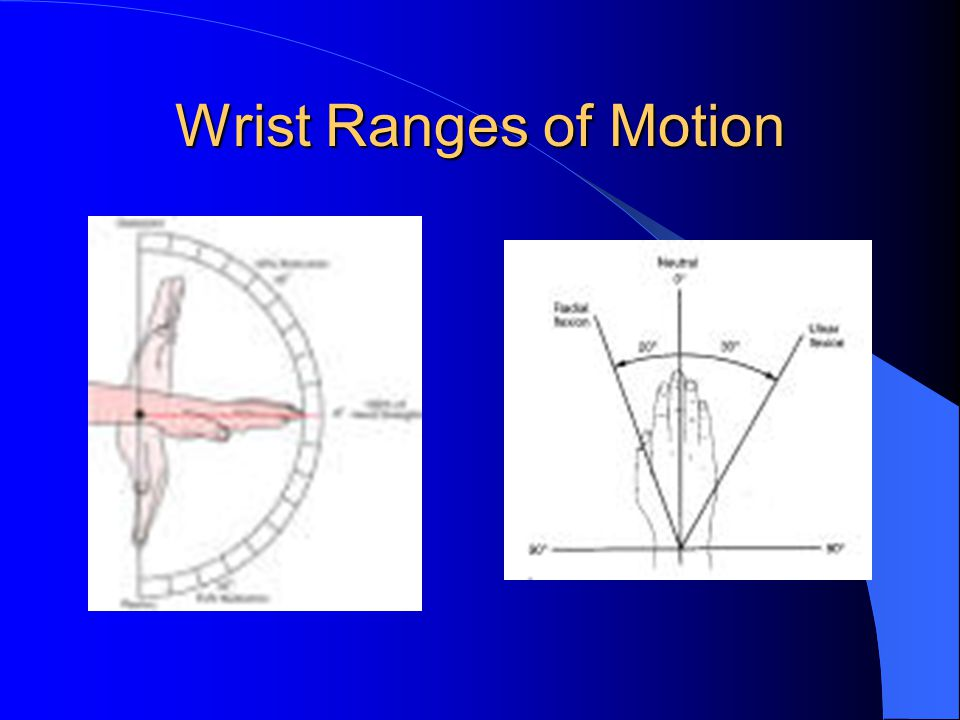 Wrist Ranges of Motion