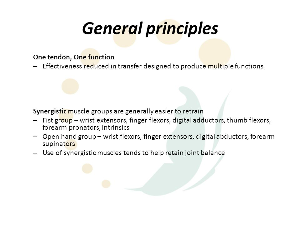 General principles One tendon, One function