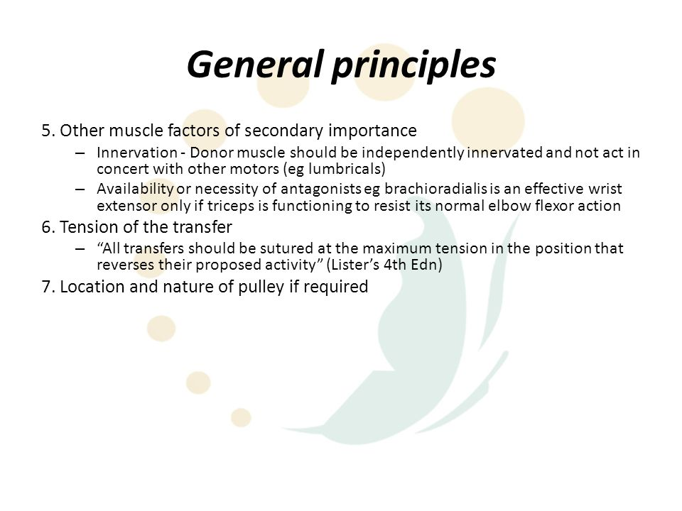 General principles 5. Other muscle factors of secondary importance