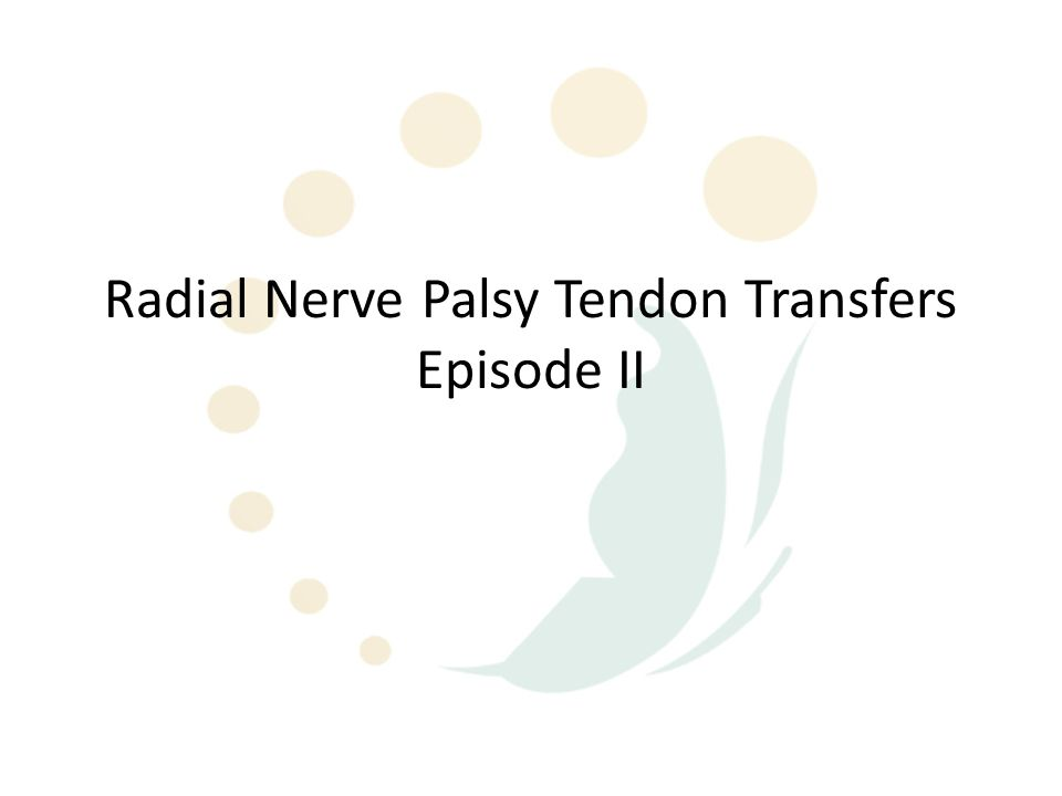 Radial Nerve Palsy Tendon Transfers Episode II