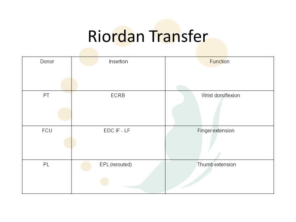 Riordan Transfer Donor Insertion Function PT ECRB Wrist dorsiflexion
