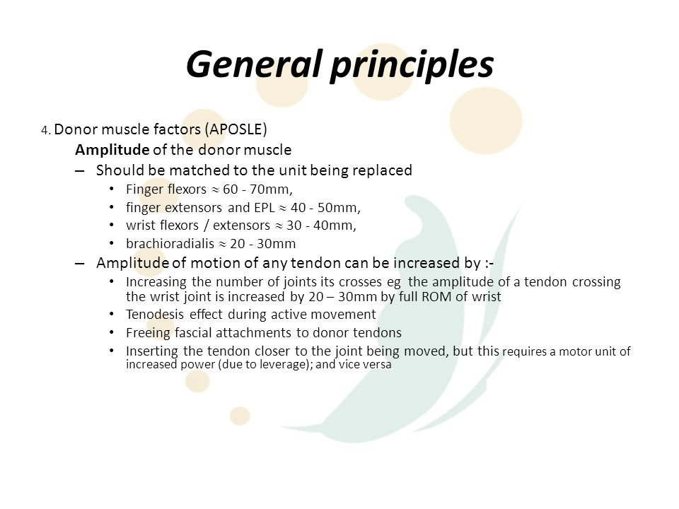 General principles Amplitude of the donor muscle
