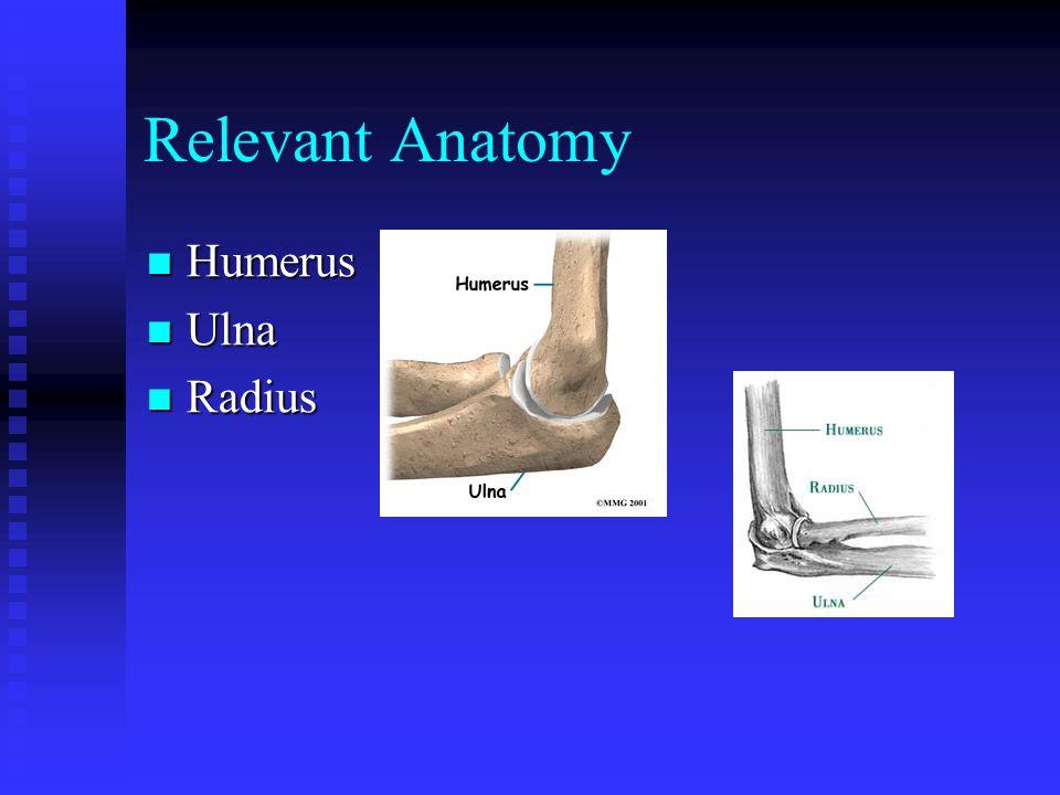 Relevant Anatomy Humerus Ulna Radius