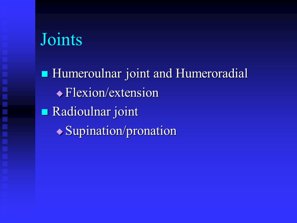 Joints Humeroulnar joint and Humeroradial Flexion/extension