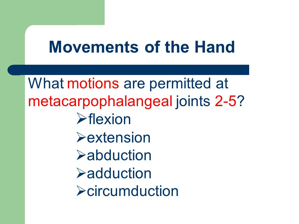 Movements of the Hand flexion