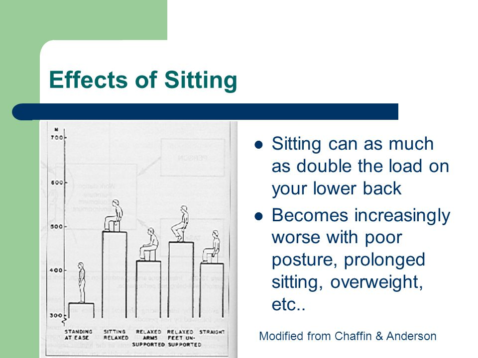 Effects of Sitting Sitting can as much as double the load on your lower back.
