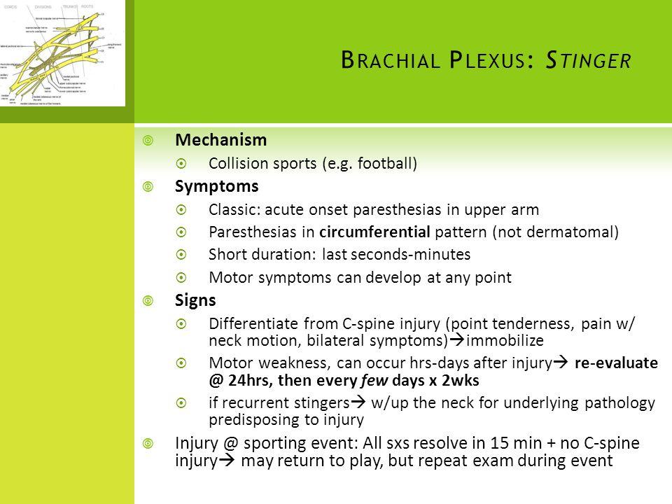 Brachial Plexus: Stinger