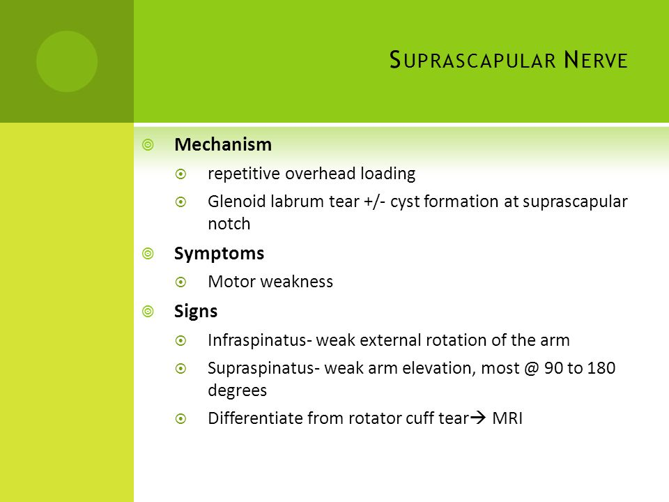 Suprascapular Nerve Mechanism Symptoms Signs