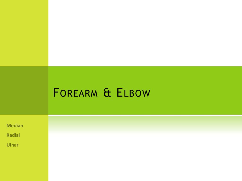 Forearm & Elbow Median Radial Ulnar
