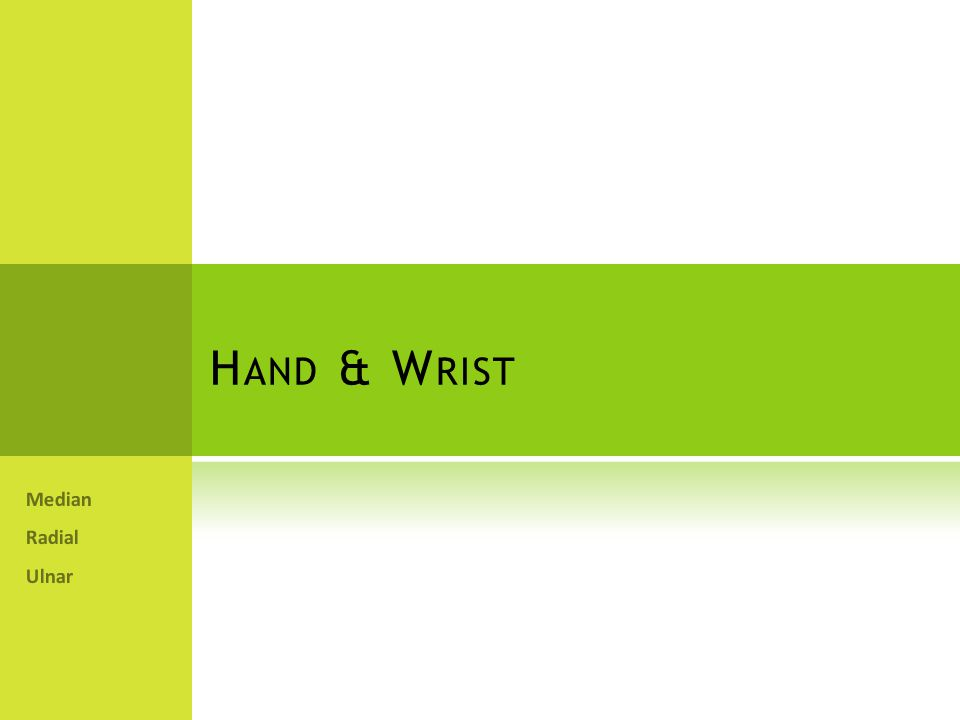 Hand & Wrist Median Radial Ulnar