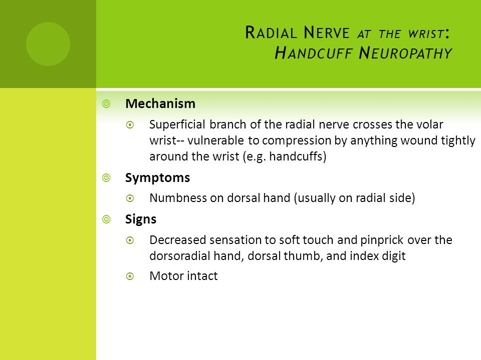Radial Nerve at the wrist: Handcuff Neuropathy