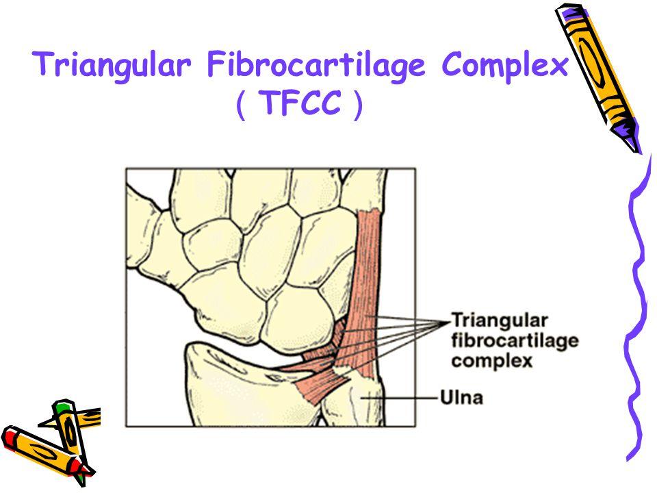 Triangular Fibrocartilage Complex (TFCC)
