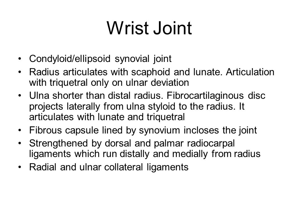 Wrist Joint Condyloid/ellipsoid synovial joint
