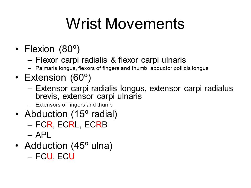 Wrist Movements Flexion (80º) Extension (60º) Abduction (15º radial)